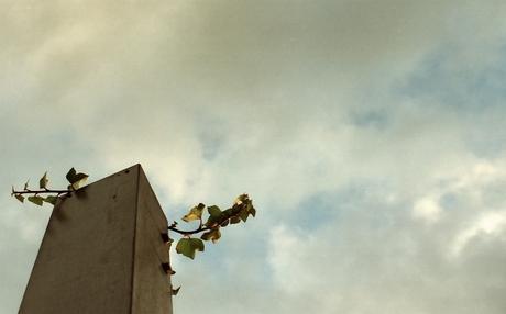 200612153