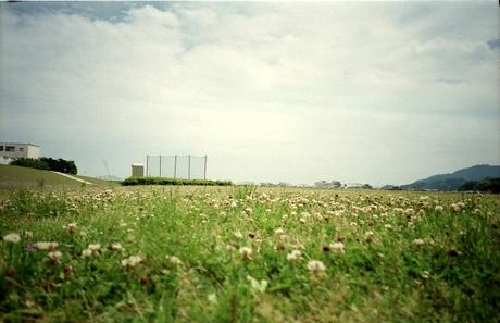 20065157