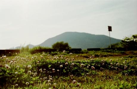 2007041515