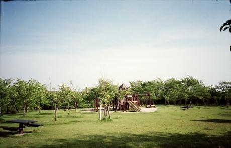 2007051531