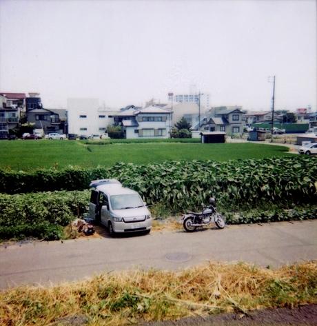 Pola2006845
